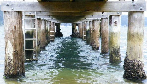 Currawong wharf. Photo by Lucie Adair-Roberts. This work first appeared in P76 Issue 6. http://rochfordstreetpress.wordpress.com/p76-literary-magazine/