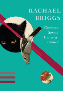 briggs-common-sexual-fantasies-ruined
