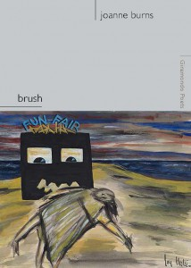 brush-cover-214x300