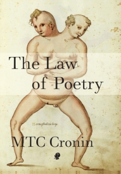 the_law_of_poetry