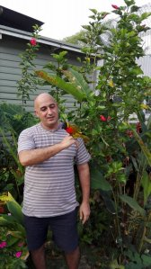 mohammad-ali-maleki-with-a-rainbow-lorikeet-in-his-graden-on-manus-island