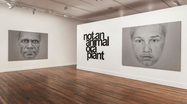 Vernon Ah Kee: not an animal or a plant , installation view at NAS Gallery, L to R George Sibley 2008 acrylic, charcoal and crayon on canvas 180 x 240 cm Collection Catherine Elms and Richard Williamson, Bris bane; not an animal or a plant 2006/2016 vinyl text on wall 180 x 201.5 cm; Eddie Ah Kee 2008 acrylic, charcoal and crayon on canvas 180 x 240 cm, co urtesy the artist and Milani Gallery, Brisbane Photo: Peter Morgan